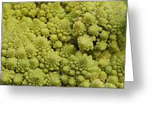Broccoli Heirloom Greeting Card