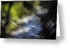 Broken Web Greeting Card