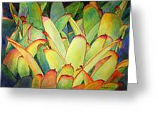 Bromeliads I Greeting Card