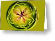 Bromiliad Orb Greeting Card