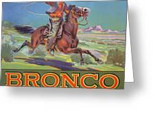 Bronco Oranges Greeting Card