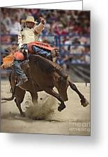 Bronco Rider Greeting Card