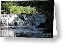 Bronx River Waterfall Greeting Card by John Telfer