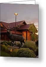 Bronze Elk At Taprock Greeting Card