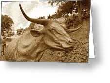 Bronze Longhorn Greeting Card
