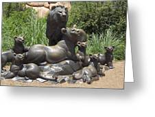 Bronze Pride Of Lions Greeting Card