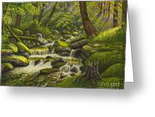 Brook In The Forest Greeting Card