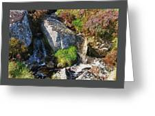 A Brook In The Wicklow Mountains, Ireland Greeting Card