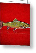 Brook Trout On Red Leather Greeting Card