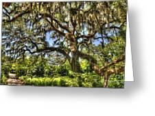 Brookgreen Gardens Greeting Card