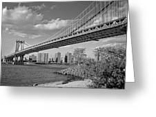 Brooklyn Beauty Greeting Card