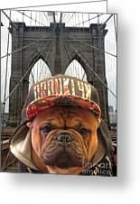 Brooklyn Dog Greeting Card