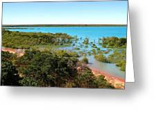 Broome Mangroves Greeting Card