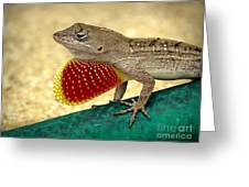 Brown Anole Greeting Card