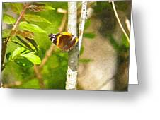 Brown Butterfly 2 Greeting Card