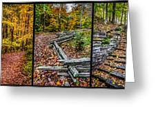 Brown County Park Greeting Card