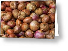 Brown Onions Greeting Card