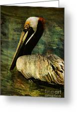 Brown Pelican Beauty Greeting Card