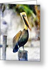 Brown Pelican Greeting Card by Lester Phipps