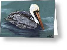 Brown Pelican On Water Greeting Card