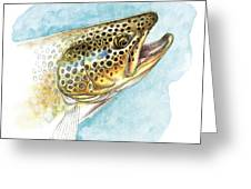 Brown Trout Study Greeting Card
