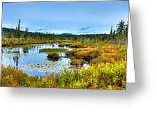 Browns Tract Inlet Waterway Greeting Card