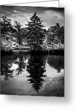 Brownsmead Reflection Greeting Card