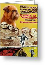 Brussels Griffon Art - North By Northwest Movie Poster Greeting Card