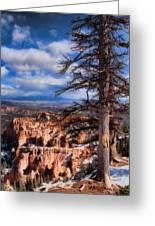 Bryce Canyon 1 Greeting Card