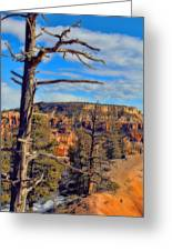 Bryce Canyon Cliff Tree Greeting Card
