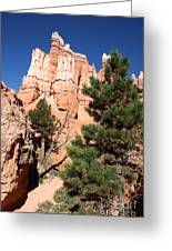Bryce Canyon Fins Greeting Card