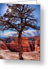 Bryce Canyon Middle Tree Greeting Card