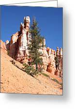 Bryce Canyon Red Fins Greeting Card