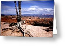 Bryce Canyon State Park Greeting Card