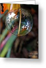 Bubble Cocoon         Greeting Card by Kaye Menner