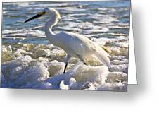 Bubbles Around Snowy Egret Greeting Card