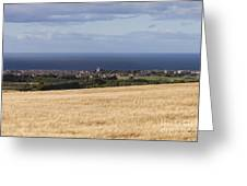 Buckie Greeting Card