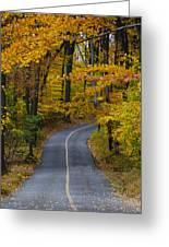 Bucks County Road In Autumn Greeting Card