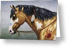 Buckskin Native American War Horse Greeting Card by Crista Forest