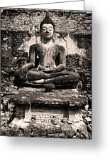 Buddha In Meditation Statue Greeting Card