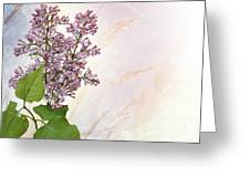 Budding Lilac Flowers Greeting Card