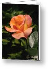 Budding Rose Greeting Card