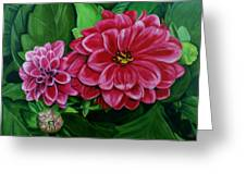 Buds And Blossoms Greeting Card