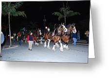 Budwiser Clidsdale Horses Greeting Card