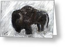 Buffalo In The Snow Greeting Card