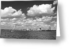 Buffalo Skyline Greeting Card