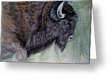 Buffalo-sully Wildlife Preserve Greeting Card
