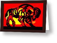Buffalo Sun Set Greeting Card