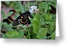 Bug Art 134 Greeting Card