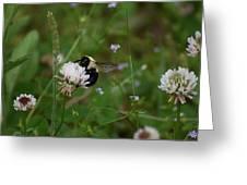 Bug Art 136 Greeting Card